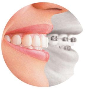 Общая ортодонтия